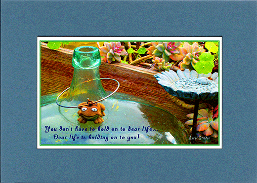 Picture of toy frog on bottle with saying,