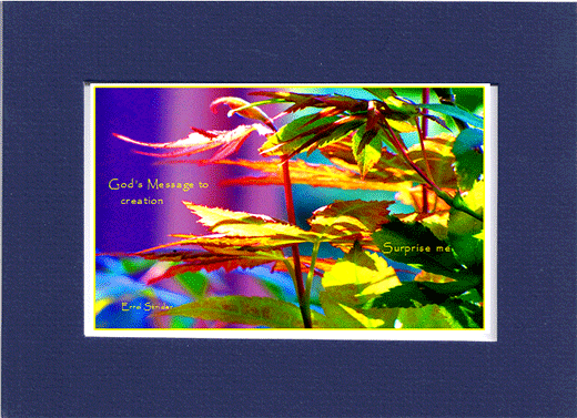 Picture of flowers with statement,