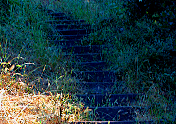 Outdoor stairs blue